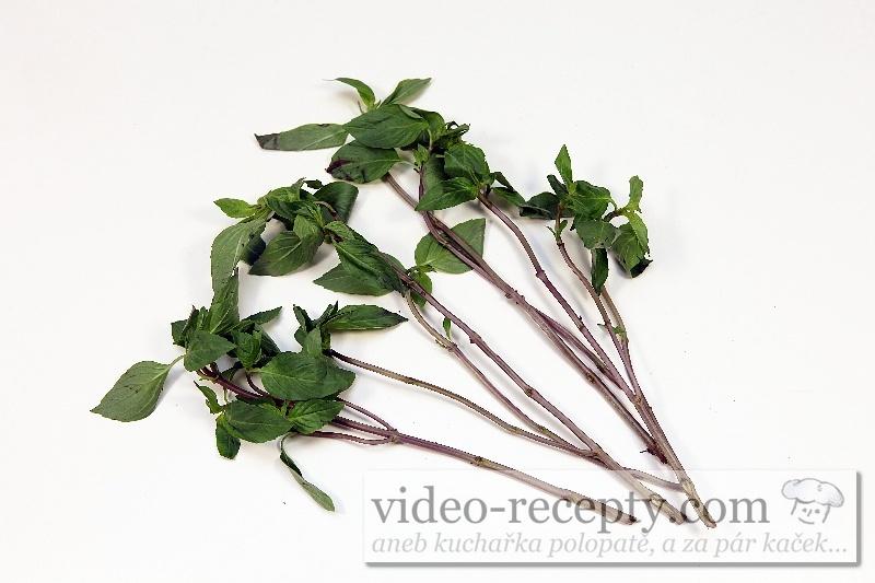Vietnamská bazalka - Lamiaceae, Ocimum spp. (húng quế Việt Nam)